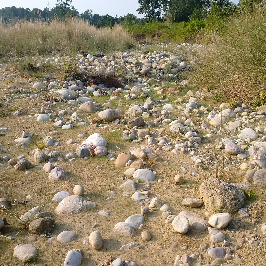 A view of the river bed