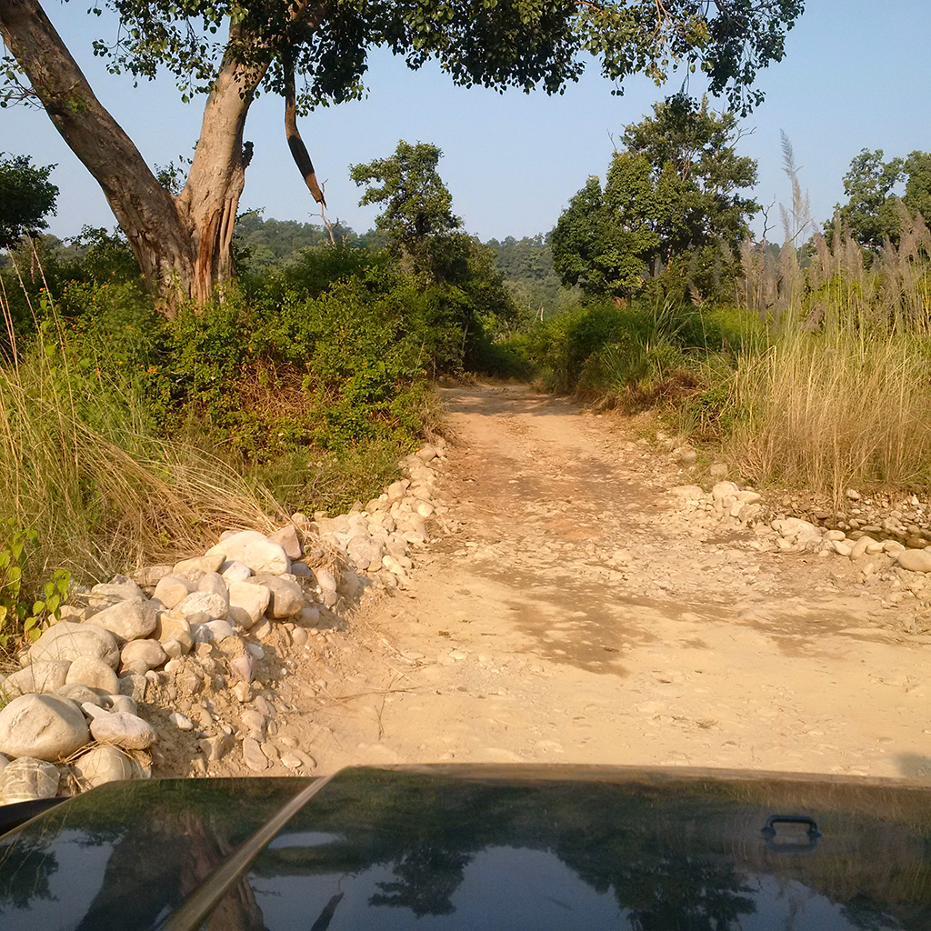 The fascinating road to Corbett National Park